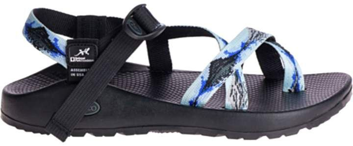 85cef97f2a5 Chaco National Park Z/2 Sandal - Men's in 2019 | Products | Sandals ...