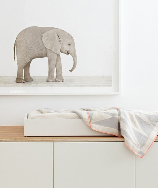 finally, a baby elephant + a new nursery! | the animal print shop blog