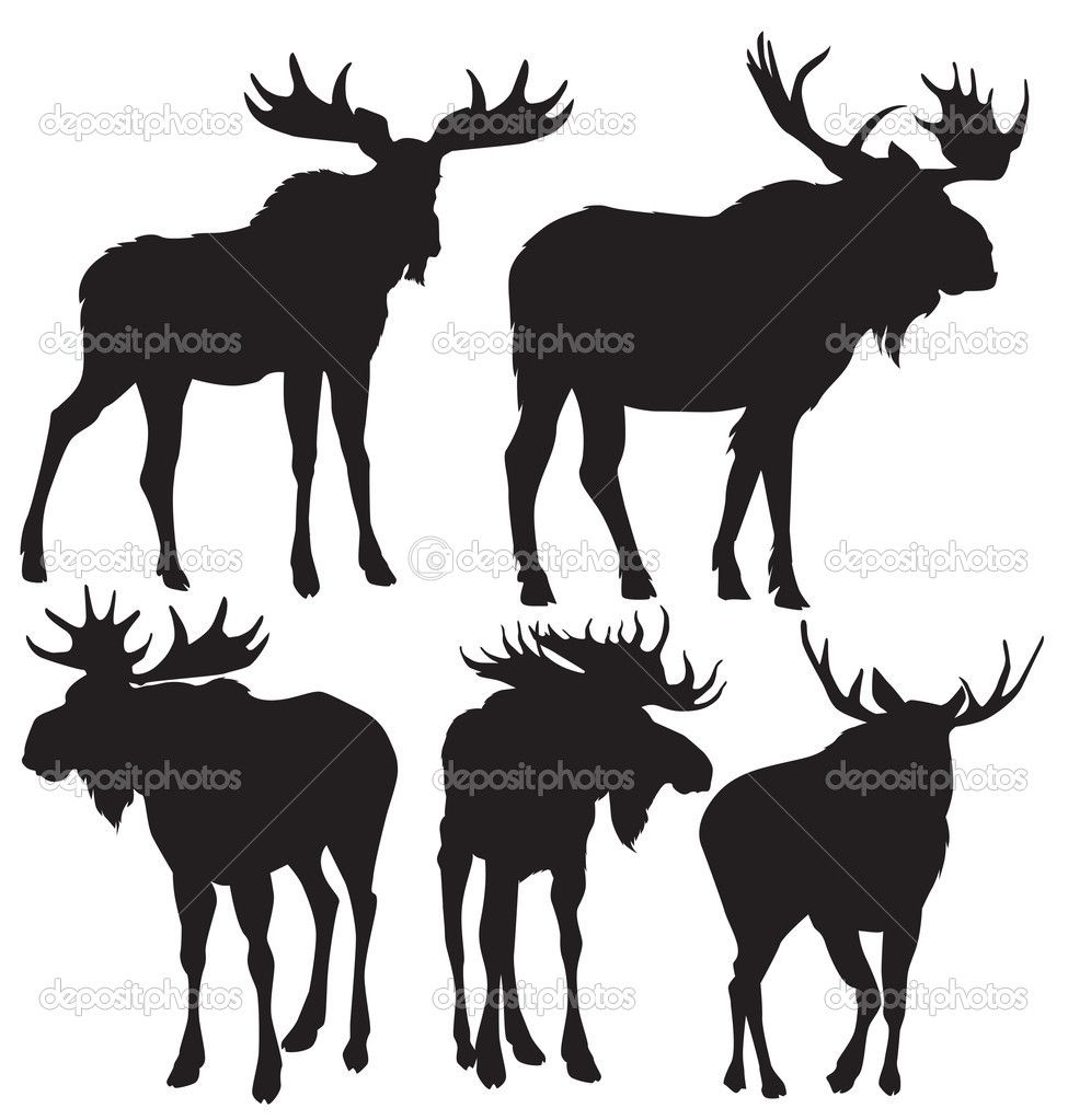 moose silhouettes moose antlers silhouette google search animal 4664