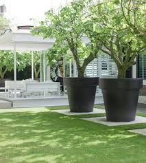Large Pots Beautiful Yards Land Scaping Pinterest Gardens And Planters