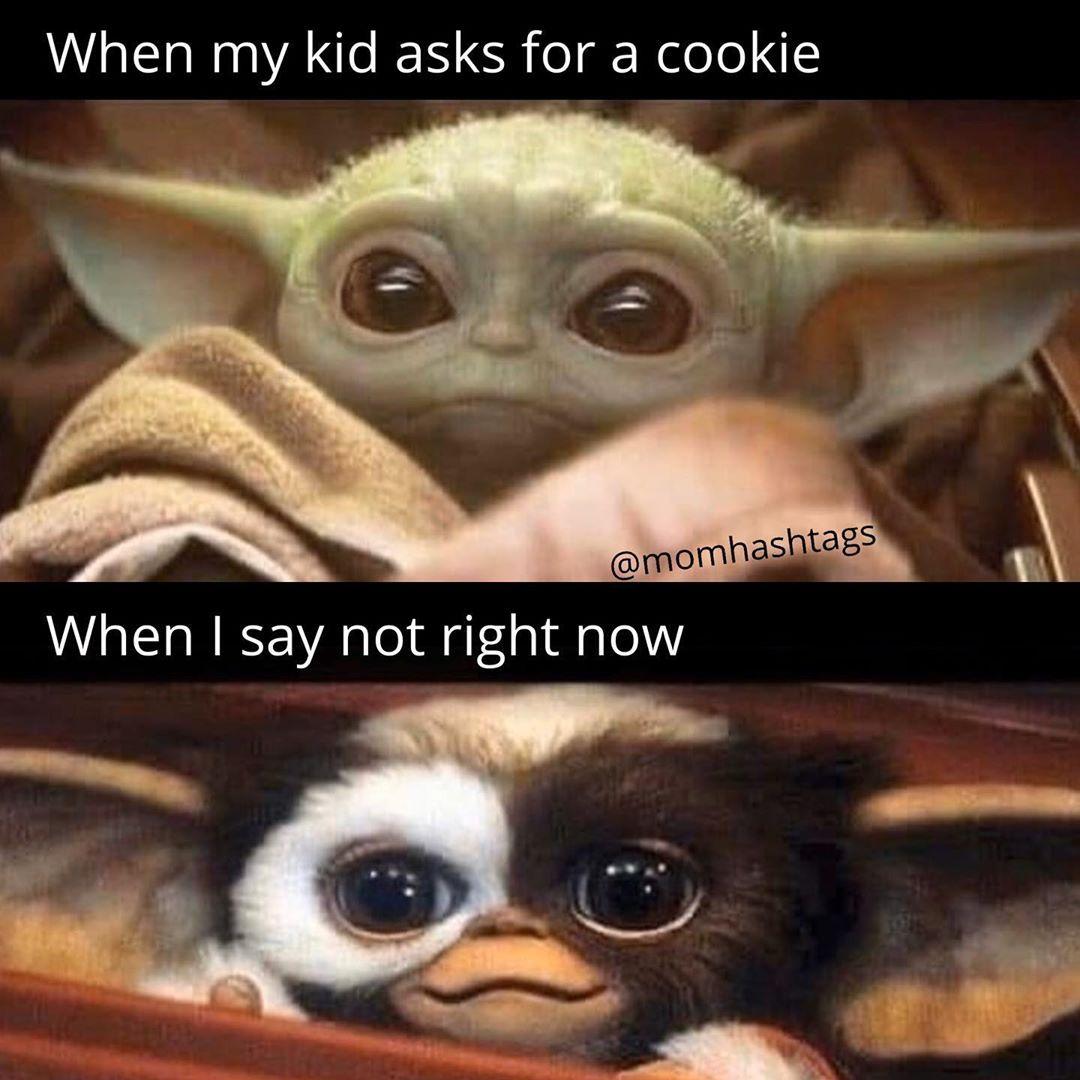 Mom Memes Parenting Humor On Instagram Dinner Is Ruined Regardless Follow Momhashtags Mom Memes Parenting Humor Memes Cute Memes