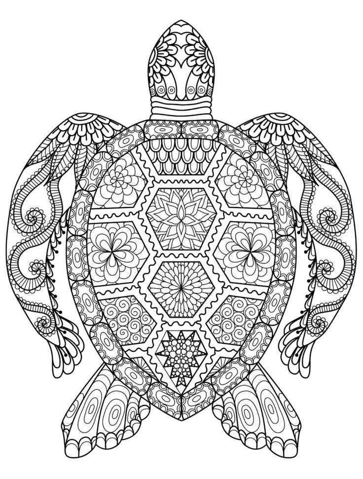 Mandalas para colorear: Dibujos para descargar gratis (Foto 6/41 ...