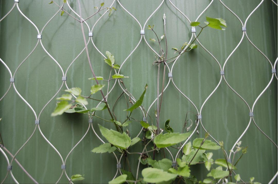 Kunstige planter Vegghengende paneler innendørs utendørs Osmanthus blader