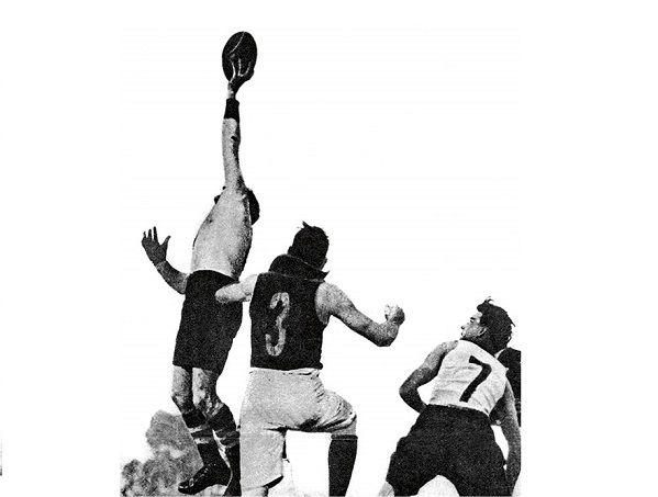 Pin by AFLLegends.com.au on AFL Legends | Afl, Legend, Leigh matthews