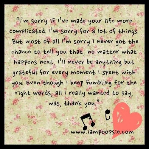 I M Sorry But Im Just Thinking Of The Right Words To Say