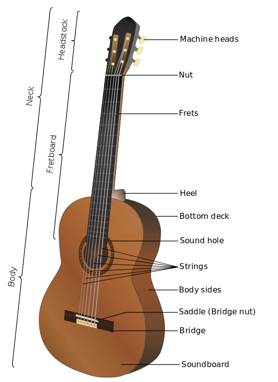 Acoustic Guitar Parts Guitar Classes Acoustic Guitar Guitar