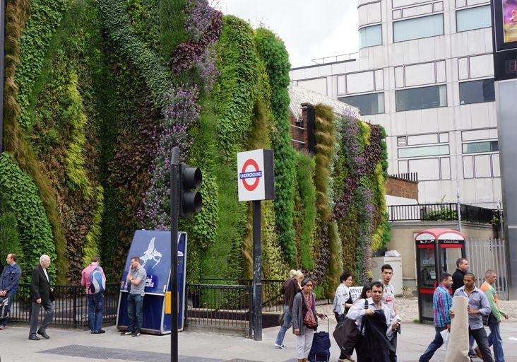 Perfect Vertical Garden Systems | Sage Vertical Gardens