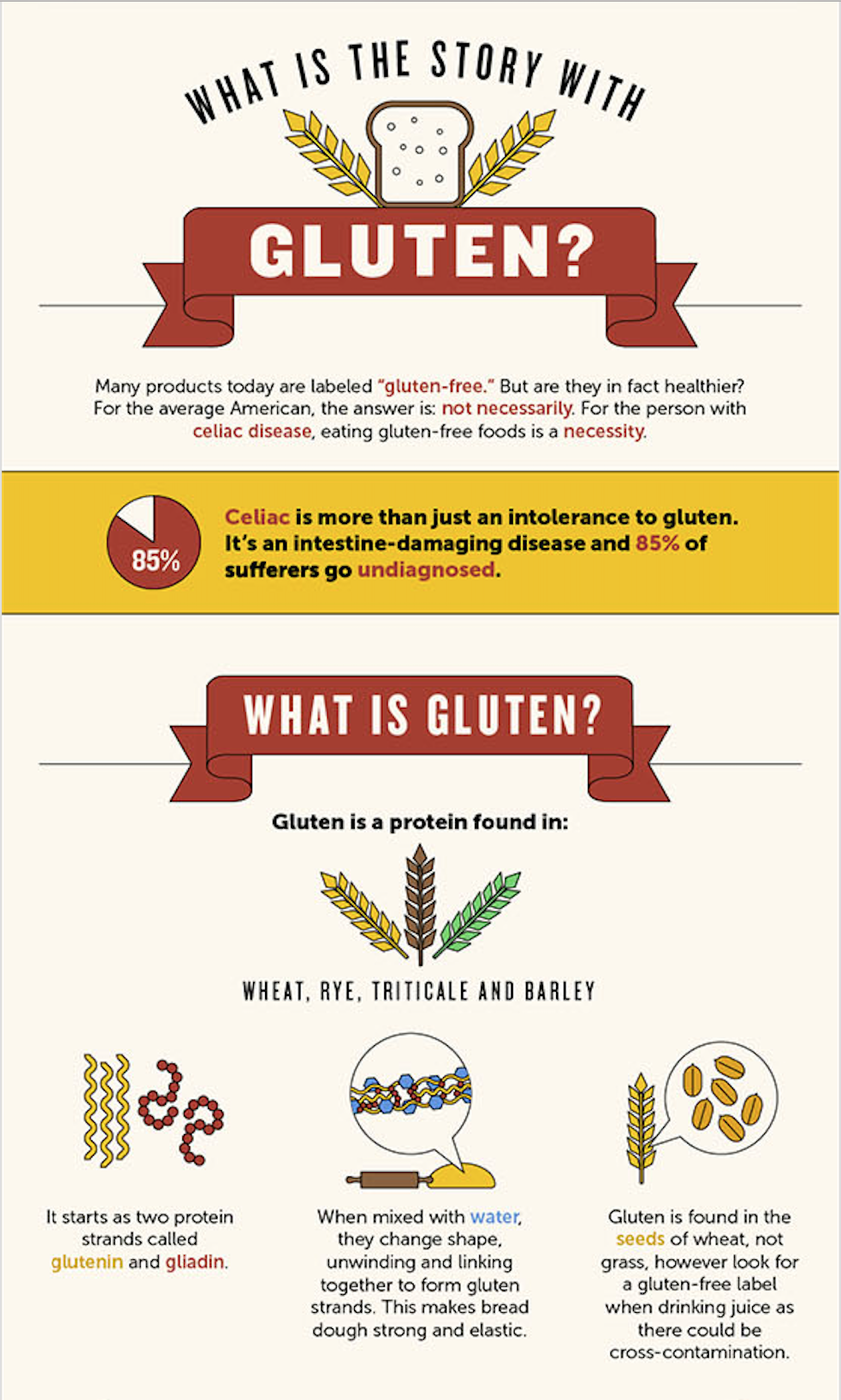 The gluten free celiac | Gluten free, Celiac, Eating gluten