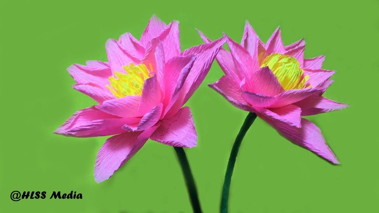 How to make pretty lotus diy origami by crepe paper easy step by how to make an origami pretty hyacinth paper flower easy fastdiy crepe paper flower tutorials izmirmasajfo
