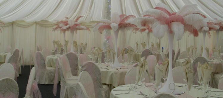Pink & White Ostrich Feather Centrepieces