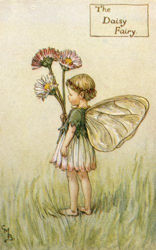 The Daisy Fairy by Cicely Mary Barker