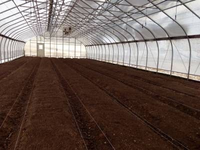 Efficient Layout Bed Preparation And Crop Selection For