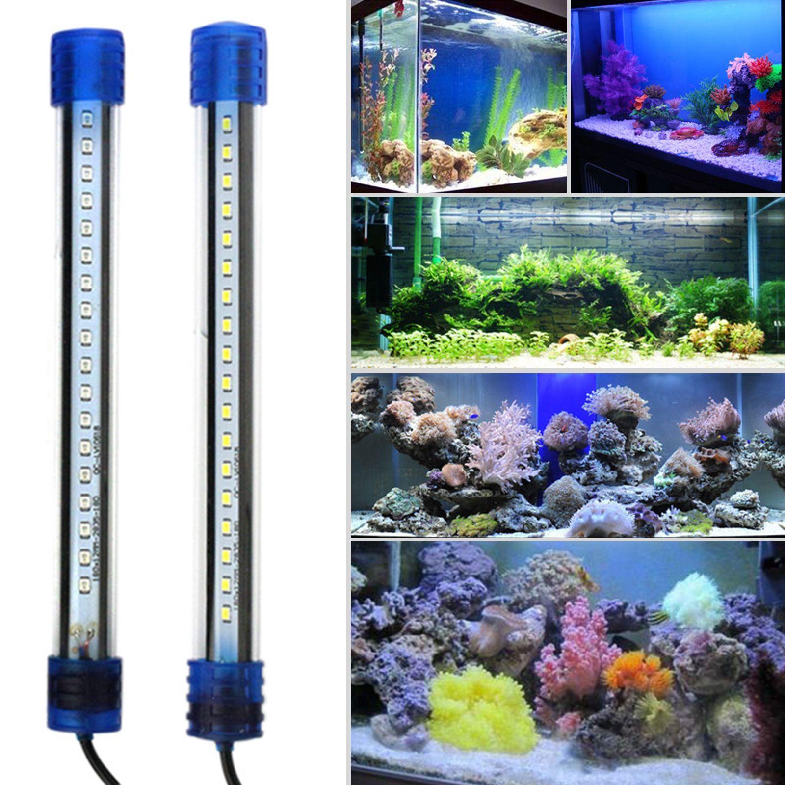 Glofish aquarium gl kit with blue led 20 gallon 30 l x