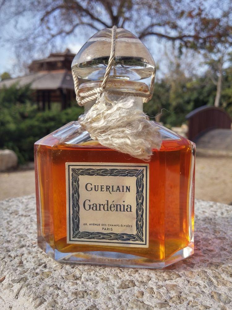 New Details Guerlain Cruel 75ml2 About Gardenia By 5ozbrand 54LARj3q