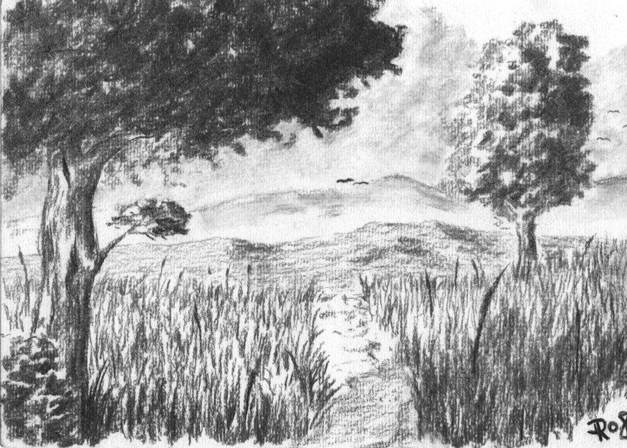 Charcoal Landscape By Drs2406 On Deviantart Charcoal Drawing Landscape Drawings Landscape Artist