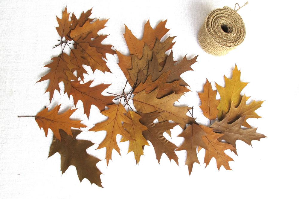 Pressed Dried Oak Leaves Cardmaking Botanical Craft Supply Etsy Cardmaking Crafts Red Oak Leaf