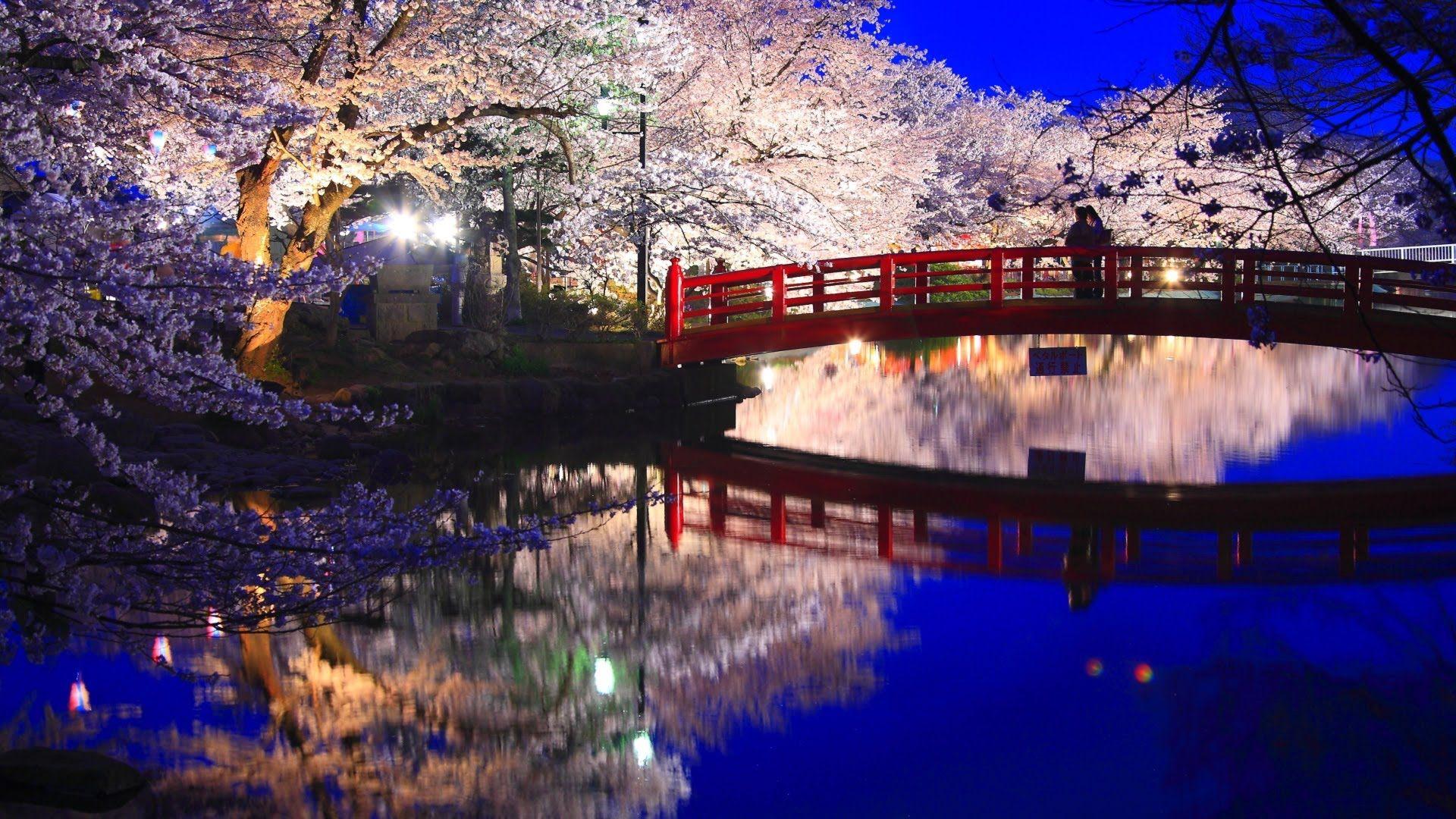 日本旅游地�_景色画像-Google検索|ホームアイデア|日本の風景、夜桜