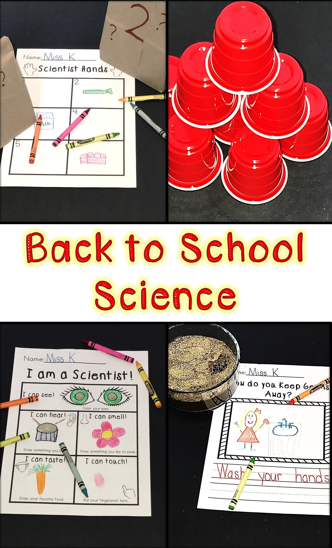 Beginning Of The Year Science
