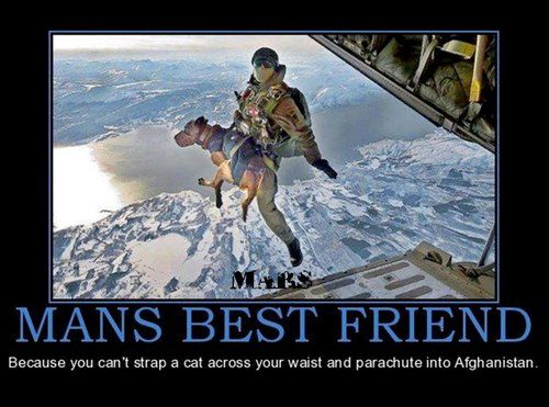 Man's Best Friend: Because you can't strap a cat across your waist and parachute into Afghanistan.