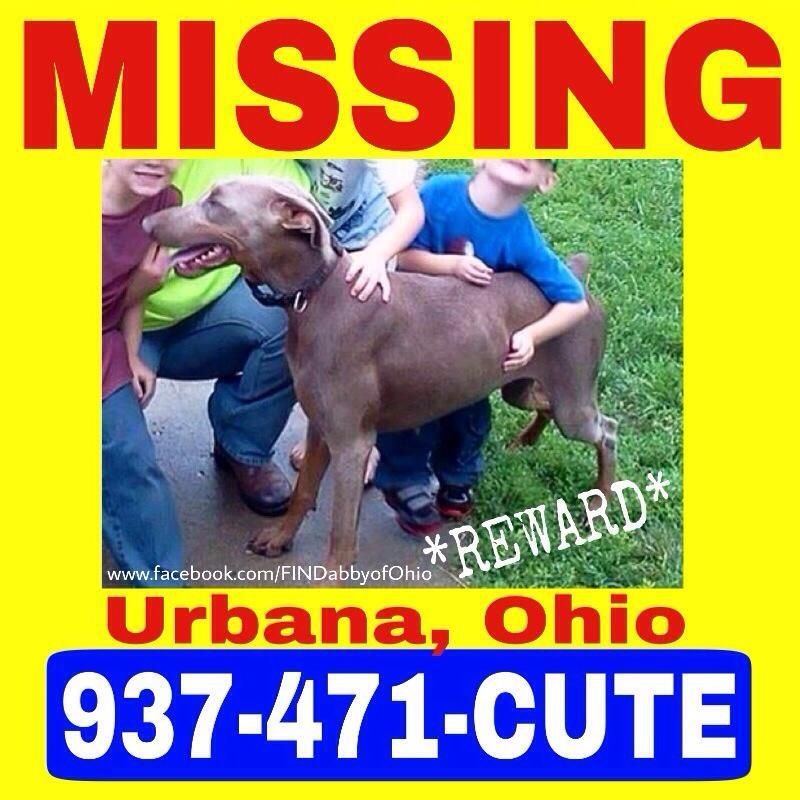 FIND Abby Of Ohio March 2 · Edited · We Are Asking For