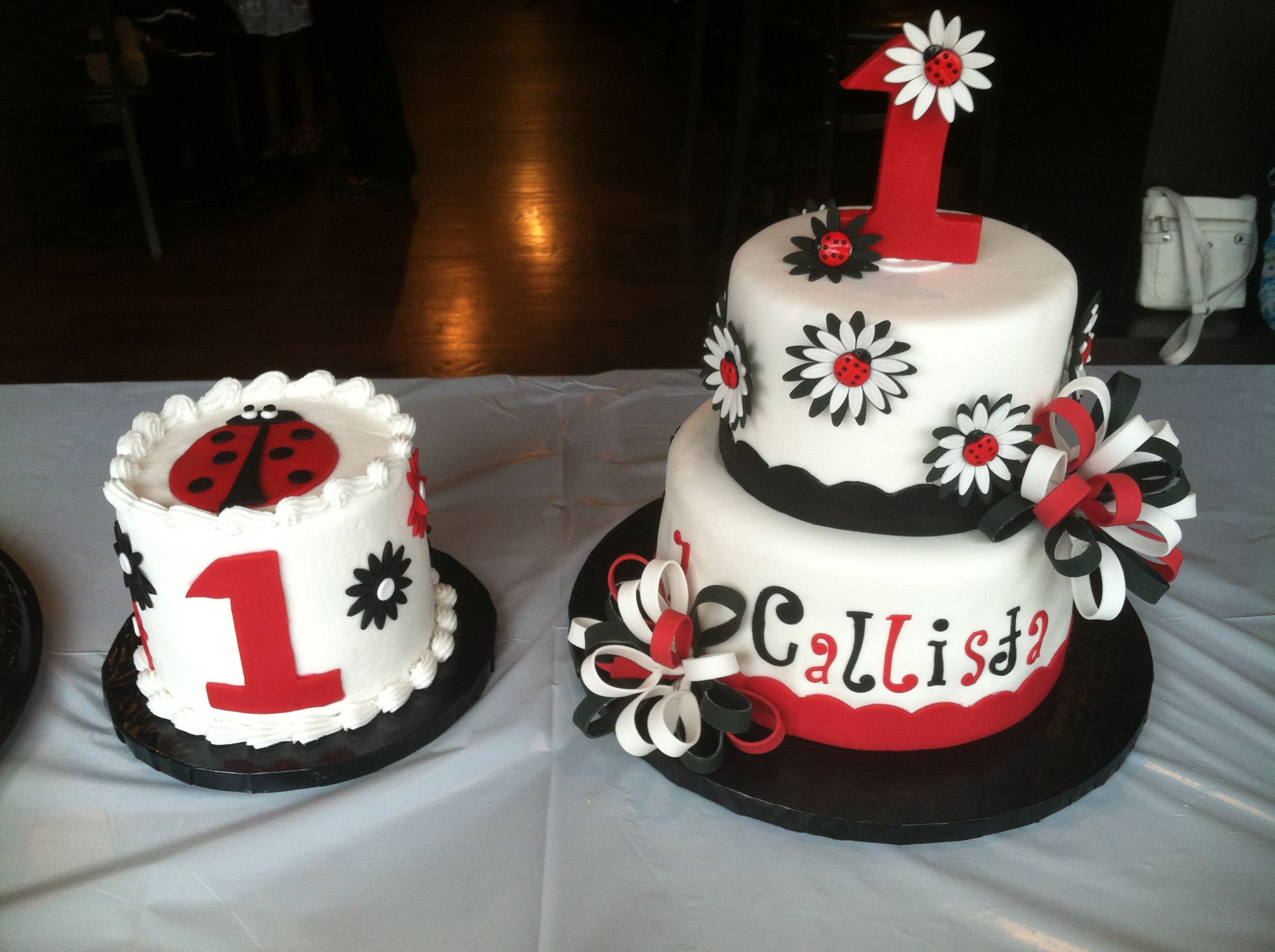 Groovy Ladybug Cake And Smash Cake I Made For My Granddaughters First Personalised Birthday Cards Sponlily Jamesorg