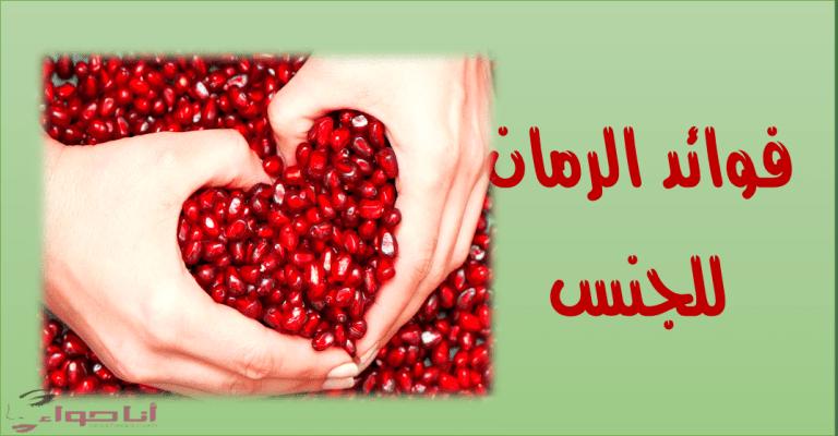 فوائد الرمان المدهشة للبشرة والمعدة والقلب مجلة انا حواء Pomegranate Raspberry Fruit