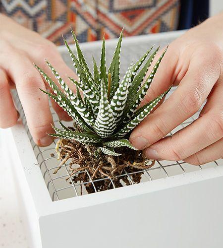 vertikaler garten ...kleine ffnungen zwicken und Pflanzen einsetzen