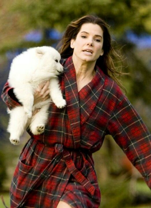 The Proposal Sandra Bullock With Kevin The Dog Scene Favorite