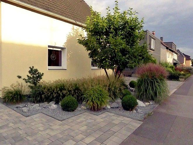 Vorgartengestaltung mit Gräsern, Buxbaumkugeln und Naturstein - garten mit grasern und kies