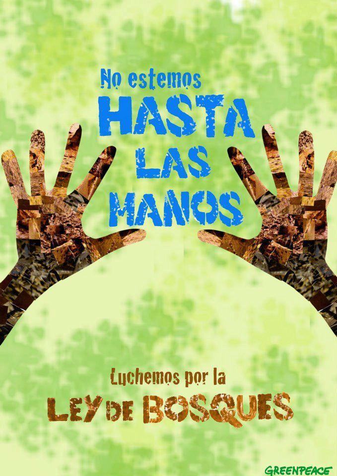 """Publicidad """"Ley de bosques"""" Greenpeace"""