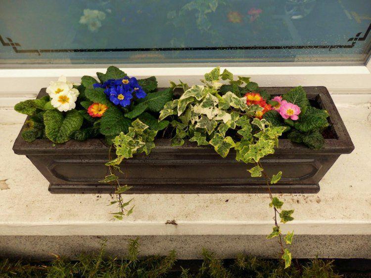 Bac A Fleurs Sur Le Rebord De La Fenetre 50 Idees Fascinantes Bac A Fleurs Boite A Fleur Et Fleur Jardiniere