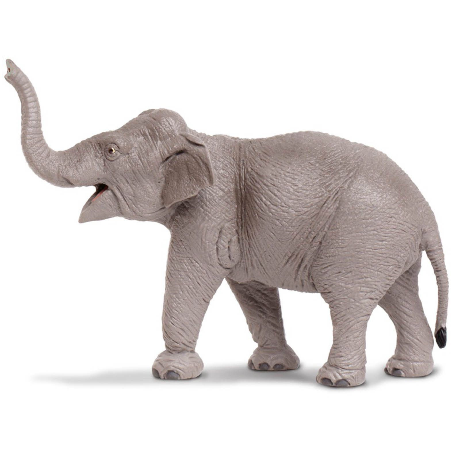 African Elephant Toys For Boys : Asian elephant wildlife wonders figure safari ltd