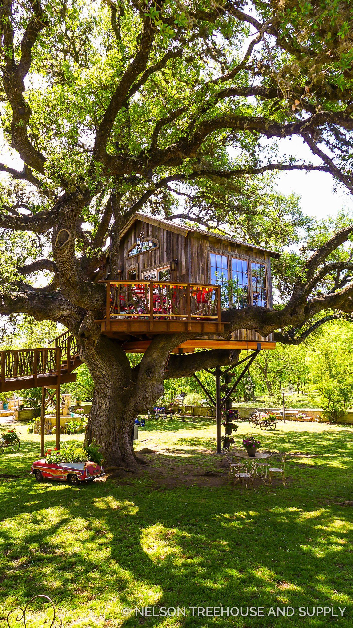 Nelson Treehouse Updates | Tree house / Dům na stromě | Pinterest ...