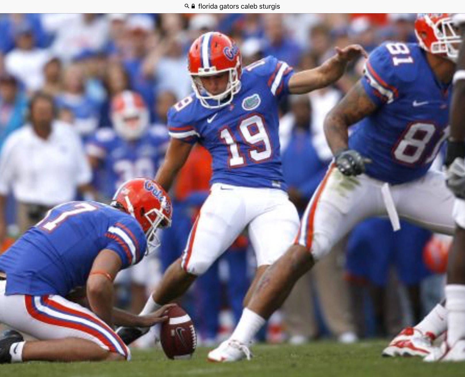 Pin by Den on The University of Florida Fighting Gators