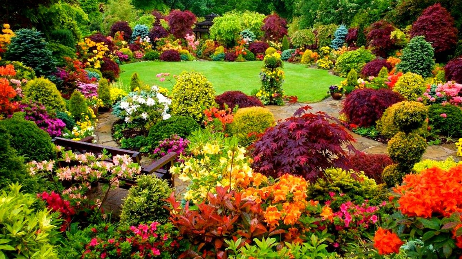 Flowers garden josaelcom 8 beautiful garden flowers that for Flowers and gardens pictures