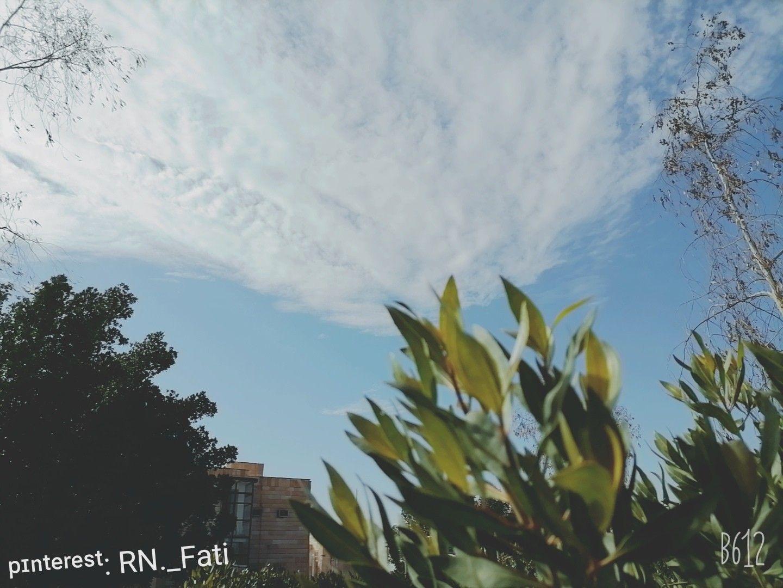 Pin By ʜᴏʟʏ ɢɪʀʟ On ꮇꮍ ꮲꭵꮸ Outdoor Clouds
