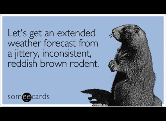 The Funniest Groundhog Day Someecards | yummy | Happy groundhog