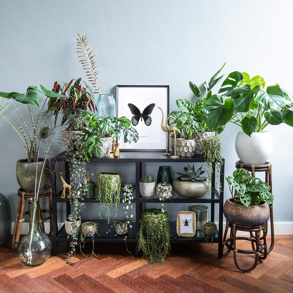 Inspiratie  Home Decor in 2019  Kast decoratie Huis