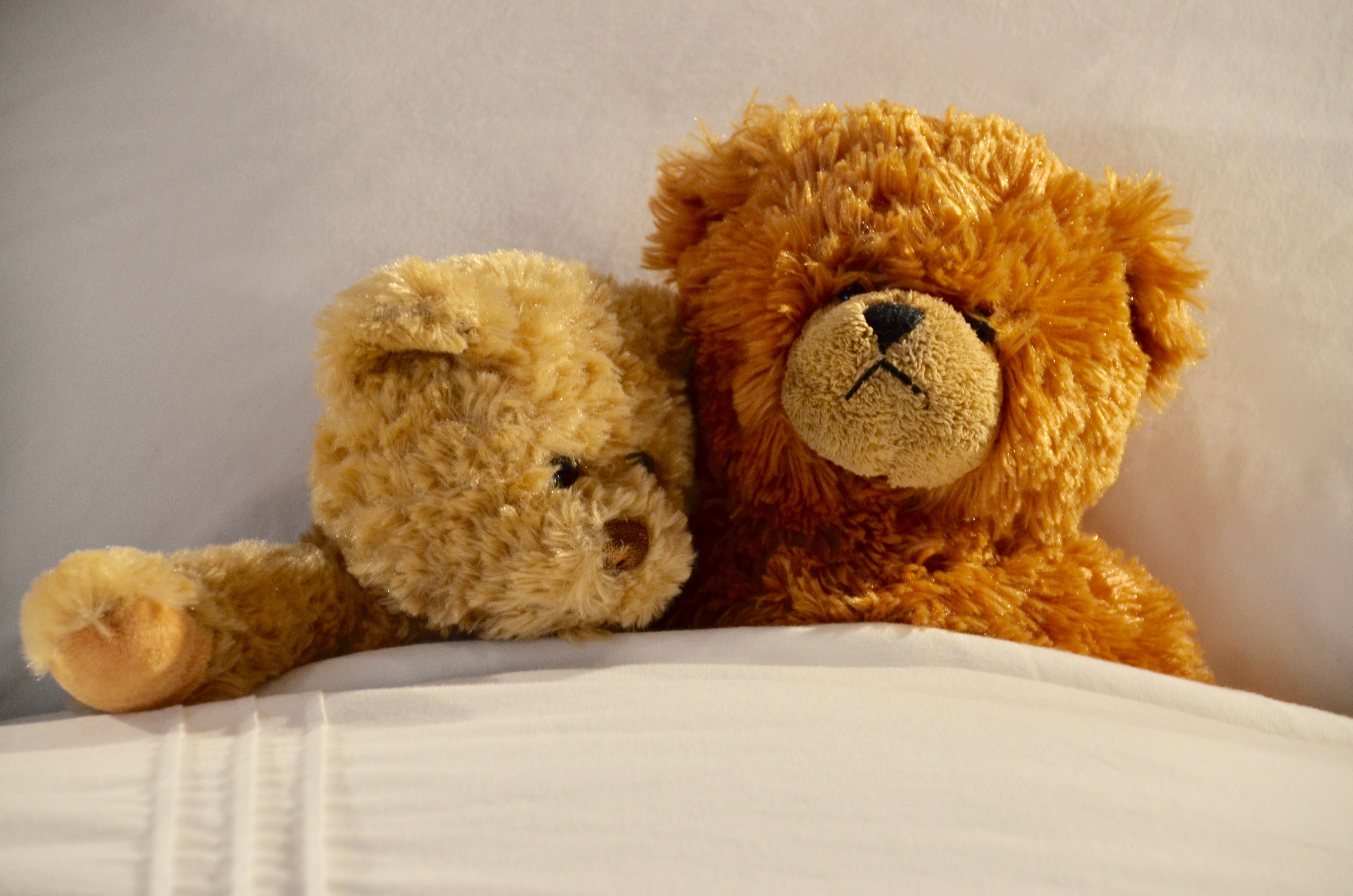 How to Keep teddy bears free of dust mites.