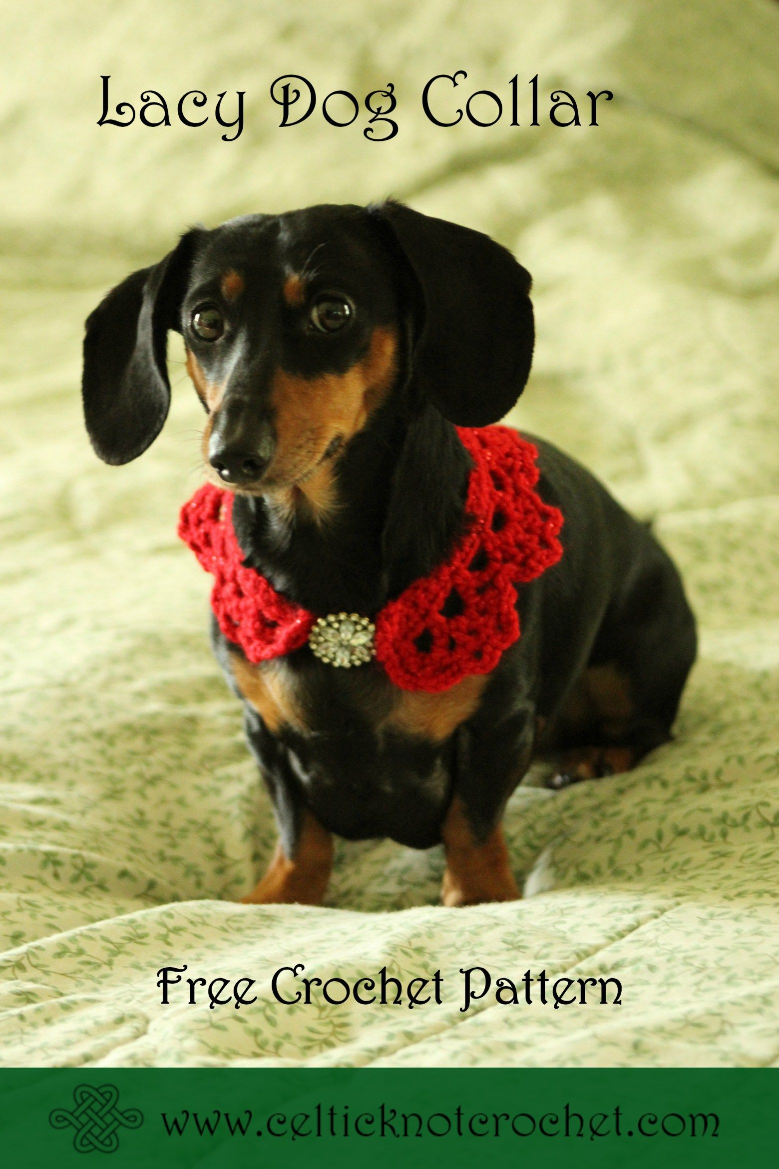 Lacy Dog Collar free crochet pattern - Celtic Knot Crochet ...