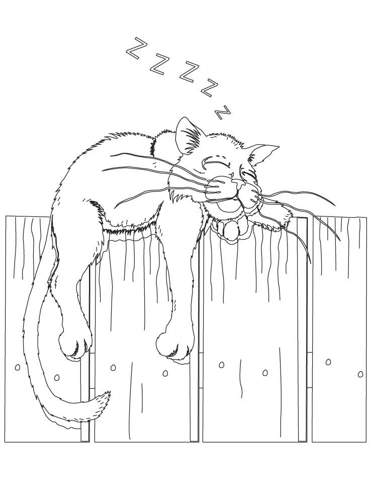 Cat On A Fence Coloring Page 738 X 954 Cat Coloring Page