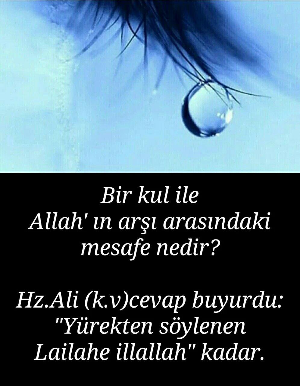 Hzali Tasavvuf Sözleri Allah Quotes Ve Islam