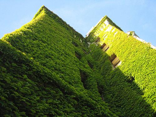 Jardines verticales, una nueva forma de arte urbano | Servicio Informativo de la Construcción