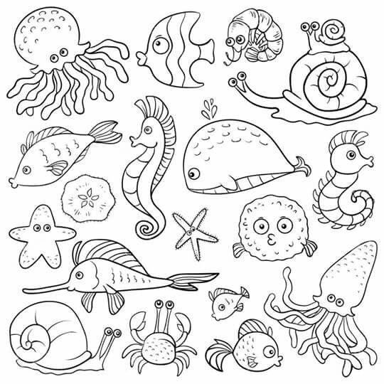 Pin de Cami Rey Laguarda en Teaching | Pinterest | Libros para ...