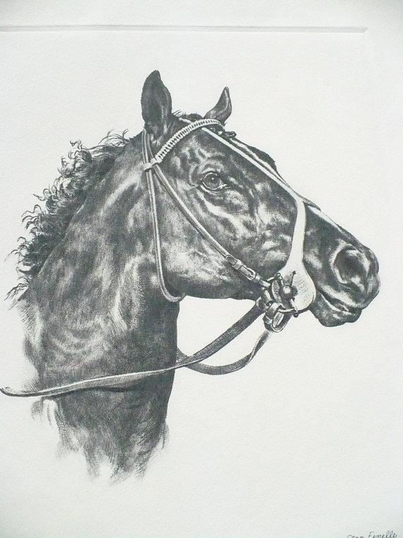 Dust Commander - 1970 Kentucky Derby Winner