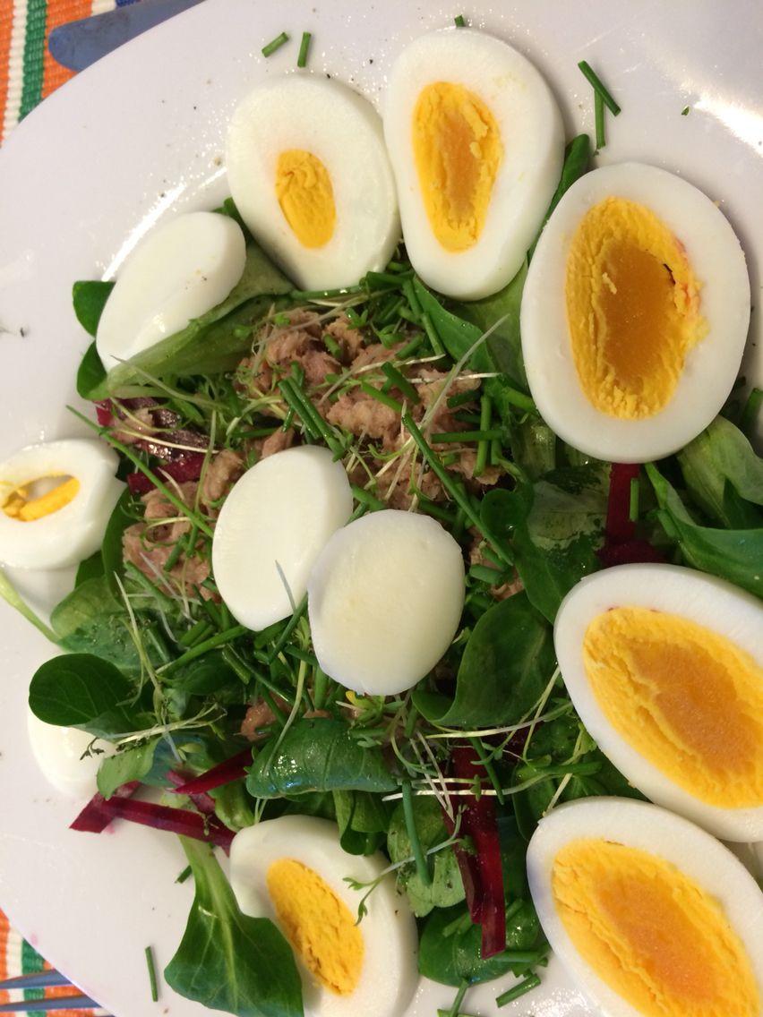Zwar nicht ganz so gelungen angerichtet aber dennoch super lecker! Thunfisch-Salat nach Paleo-Stile! :-)