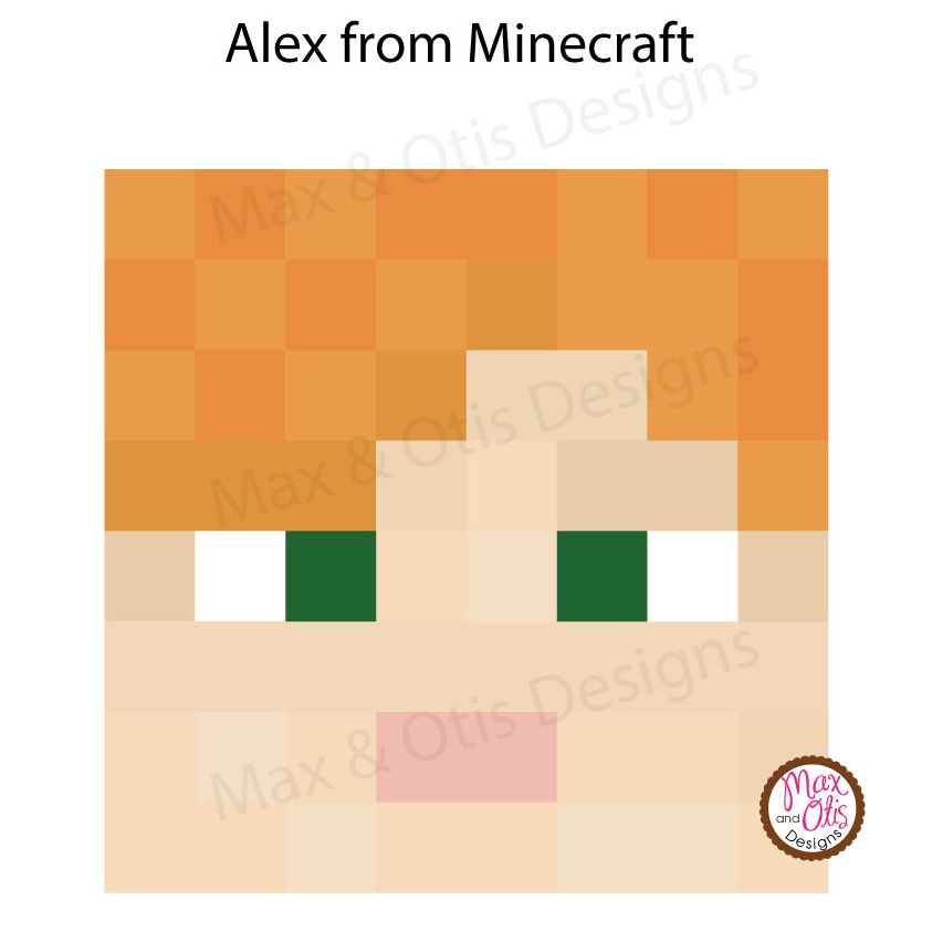 minecraft steve and alex face