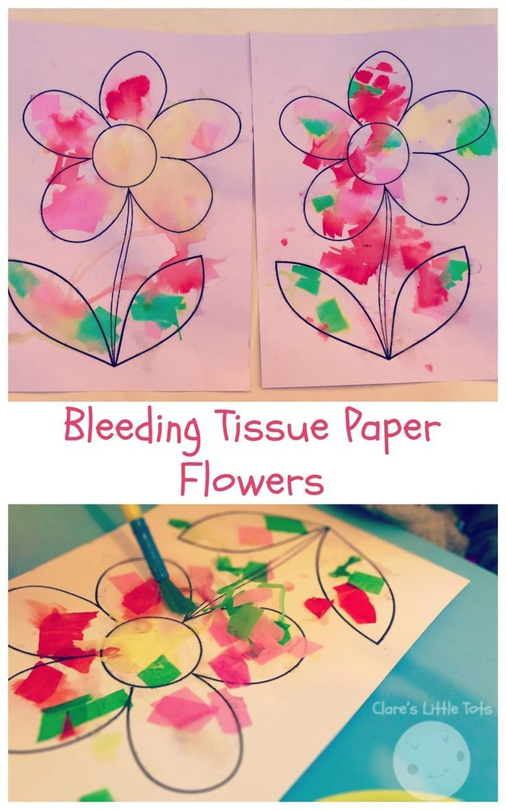 Bleeding Tissue Paper Flowers Spring Theme Pinterest Tissue