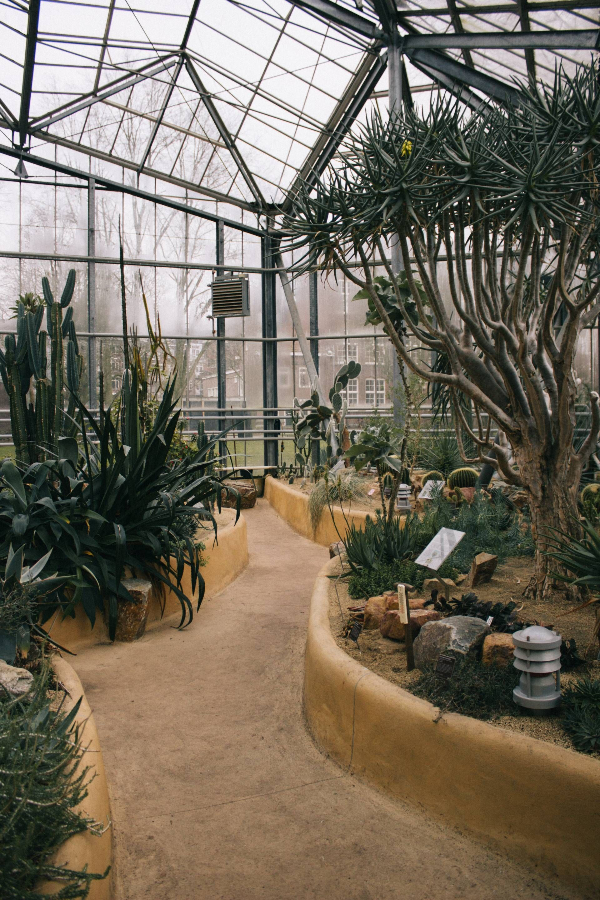 butterfly pavilion 3deluxe museography pinterest