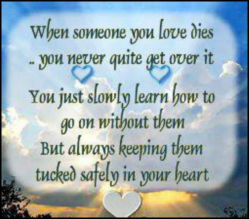 How Do I Go On Without Him Every Day Sometimes I Feel Like I Am Only Going Through The Motions Not Through Life Loved One In Heaven Quotes Miss You Mom